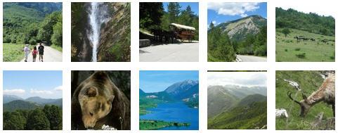 Le più belle foto di Parco Nazionale d'Abruzzo